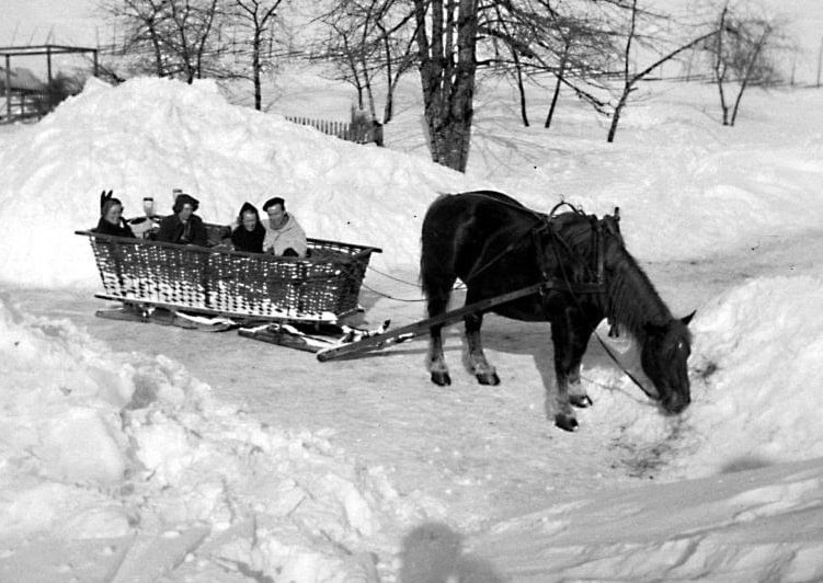 Our Ancestors On A Sleigh On Christmas in Sweden (Jullotta sleigh ride)